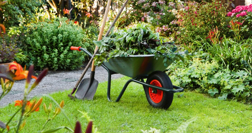 Merveilleux Gardening