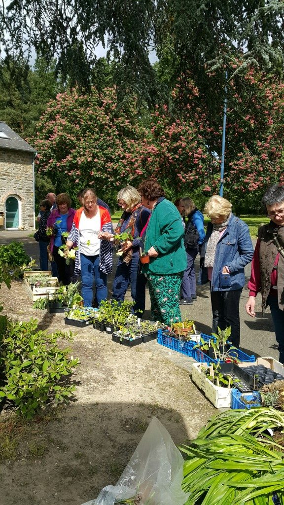 2018-05-13-MAYENNE-Plant-Swap Large e-mail view