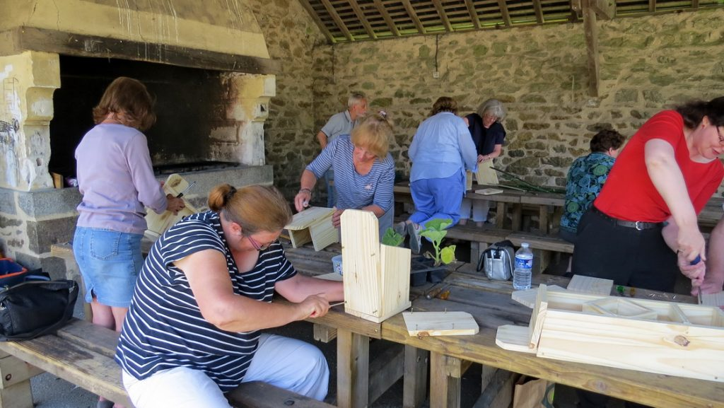 Making Bird boxes and insect hotels
